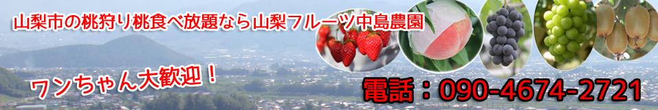山梨市の桃狩り食べ放題中島農園
